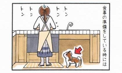 食事の準備をしてい時には。犬がキッチンで料理を作る飼い主の足元に待機
