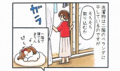洗濯物は二階のベランダに干しているのですが、そろそろ取り込むかと窓を開けると一階で寝てる犬が聞きつけて