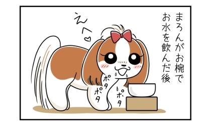 犬がお椀でお水を飲んだ後。口からポタポタと水を垂らす犬
