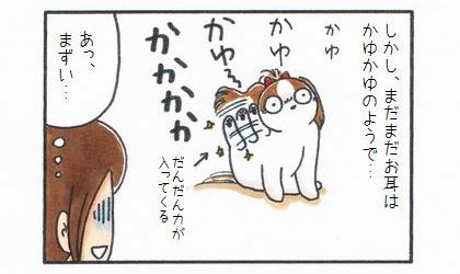 しかし、まだまだお耳はかゆかゆのようで…。犬が足で耳を掻いている。だんだん力が入ってくる。あっ、まずい…