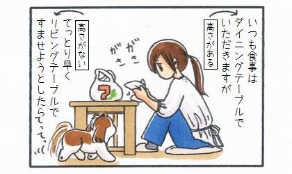 いつも食事はダイニングテーブルでいただきますが、手っ取り早くリビングテーブルですませようとしたら犬がやってきて