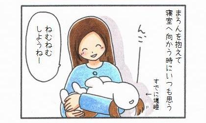 犬を抱えて寝室へ向かう時にいつも思う。すでに爆睡した犬を抱えて、ねむねむしようねー
