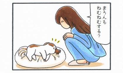 ビーズクッションの上で寝る犬に、ねむねむする?と聞く