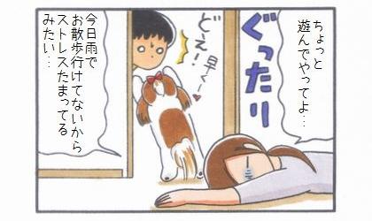 ひよことお出迎え-4