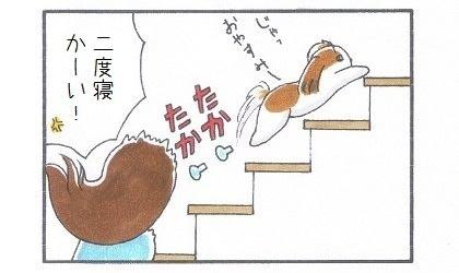 満腹になった目覚まし犬-4
