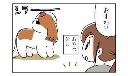 おやつなし:手におやつを持たずに、おすわり。おすわりしない犬