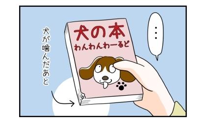 通販で買った中古の犬本を開封してみると、本には犬が噛んだあとがあった