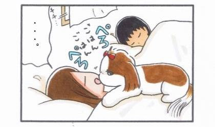 目覚まし犬をパパにパス!→-1