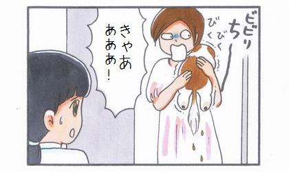 ビビリまろんの動物病院へGO!-合わせ技編--4