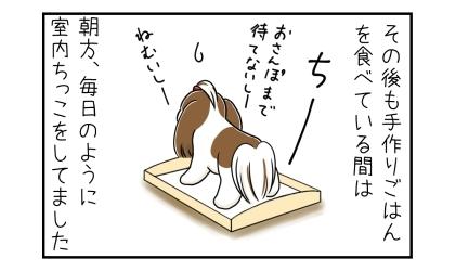 その後も犬が手作りご飯を食べている間は、朝型毎日のように室内おしっこをしてました。お散歩まで待てないし眠いし