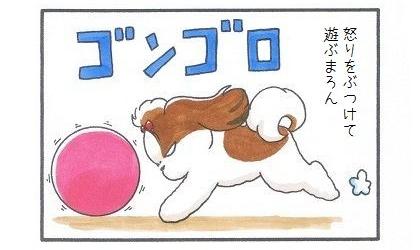 大きいボール その後-1