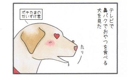 鼻パク-1