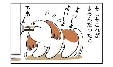 もしもうちの犬が介助犬だったら。冷蔵庫に付いた紐を口で引っ張る犬