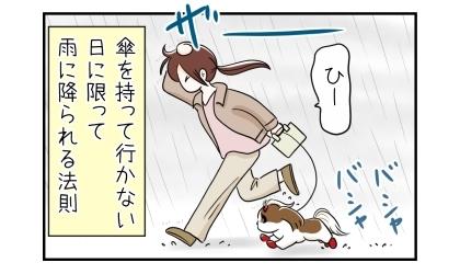 犬の散歩中に雨に降られる。傘を持って行かない日に限って雨に降られる法則