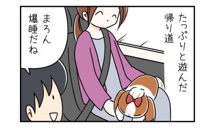 たっぷりと遊んだ帰り道。車の中で爆睡する犬