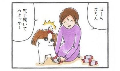 犬靴下に挑戦!-3