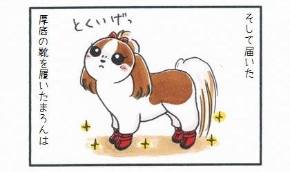 そして届いた厚底の靴を履いた犬は。得意げな顔をする犬