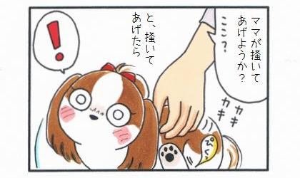 ママが掻いてあげよっか?ここ?と、犬の背中を掻いてあげたら。犬の目が輝き、足がぴくっとする