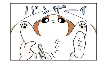 バンザイのポーズでブラッシングされる犬。んん?脇の下に櫛が通らない