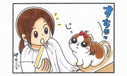 犬が隣にすわって卵サンドをおねだり