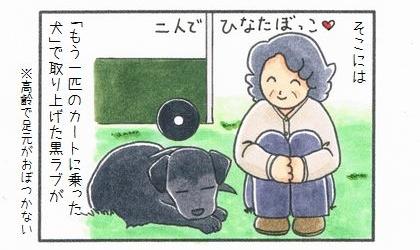 もう一匹のカートに乗った犬 ~久しぶりの再会~-2