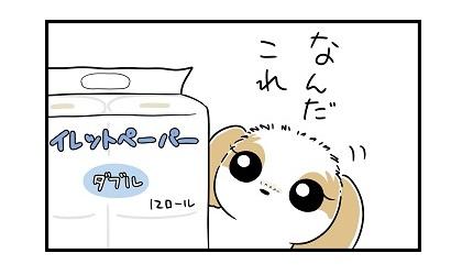 トイレットペーパーe 4コマ犬漫画 ぷりんちゃんねる