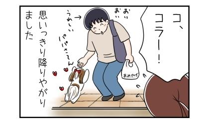 玄関の土間に降りてパパに飛びつく犬。思いっきり降りやがりました