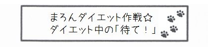 まろんダイエット作戦☆ダイエット中の「待て!」-0
