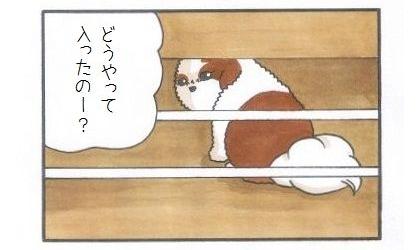 マジシャンまろん-4