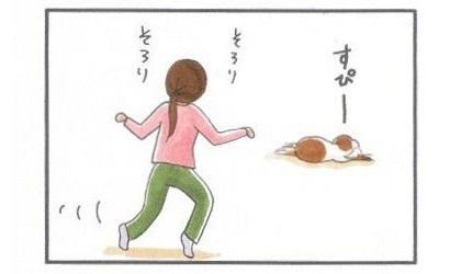 外耳炎のお話☆通気よく-2