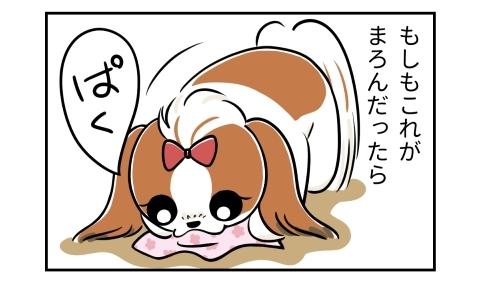 もしもうちの犬が介助犬だったら。落ちたハンカチを口にくわえる犬