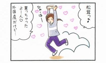 秋の味覚♪松茸~-1