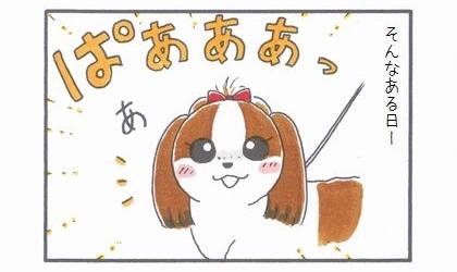 ちっこポイント復活!-2