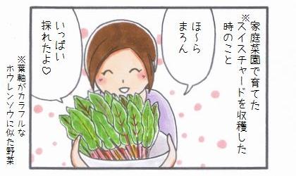 好みではない野菜-1