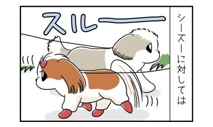 シーズーに対しては、うちの犬はスルーする。相手のシーズーもスルーする