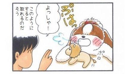 まろちゃんぺ-4