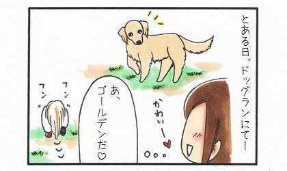 大型犬の威力-1