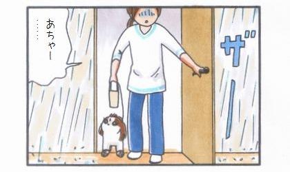 雨の合間にお散歩-4