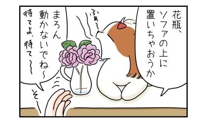 花瓶、ソファの上に置いちゃおうか。あくびをする犬。動かないでね~。待てよ、待て~