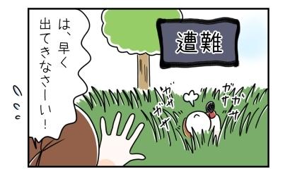 雑草の中で遭難する犬。は、早く出てきなさーい!