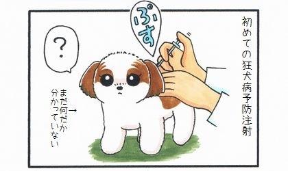 狂犬病予防注射のお知らせ-1