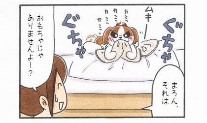 敷物1番乗り -まろんの毛布編--4
