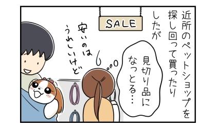 近所のペットショップを探し回って犬の首輪とリードとハーネスを買ったりしていたが(見切り品。安いのはうれしいけど)