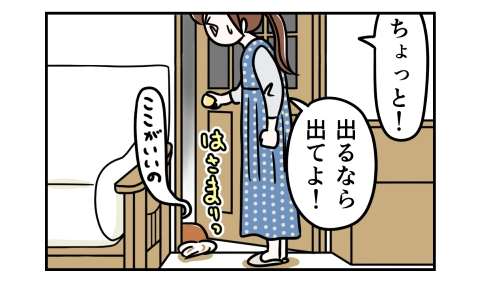 ちょっと!出るなら出てよ!犬はここがいいのとドアに挟まったまま待っていた