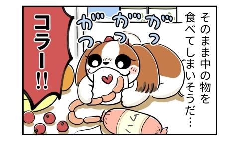 そのまま中の物を食べてしまいそうだ…。がつがつとソーセージを食べる犬。コラー!!