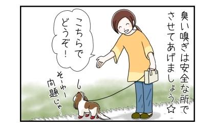 犬の臭い嗅ぎは安全な所でさせてあげましょう。緑の雑草畑の前で、こちらでどうぞ!