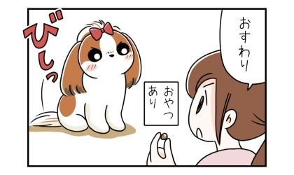 おやつあり:手におやつを持って、おすわり。おすわりする犬