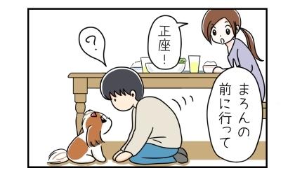 犬の前に行って正座!顔にご飯粒をつけた夫を誘導する