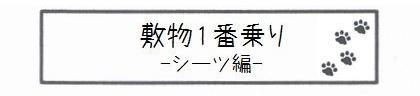 敷物1番乗り -シーツ編--0
