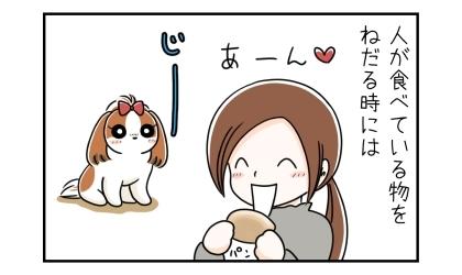 人が食べている物をねだる時には。パンを食べる飼い主をじーっと見つめる犬